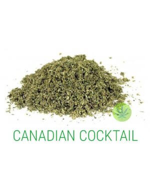 Canadian Cocktail